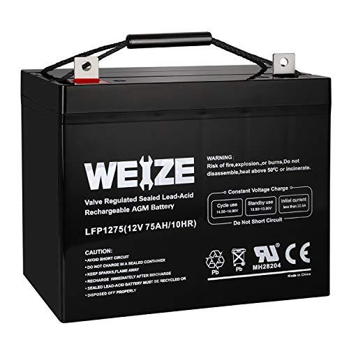 Weize 12V 75AH Deep