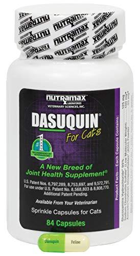 Nutramax Dasuquin Capsules 84