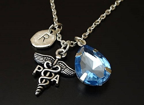 PA Student Gift Physician Assistant Necklace Physician Assistant Graduation