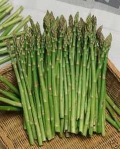 Asparagus Mary Washington Great Heirloom Vegetable By Seed Kingdom BULK 1 Lb Seeds by Seed Kingdom