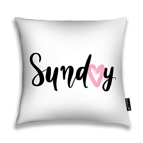 Randell Throw Pillow Covers Sunday Modern Brush Blogs