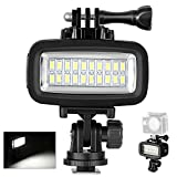 Neewer Waterproof Up to 131ft/40m Underwater 20 LED 700LM Flash Dimmable Fill Night Light with 3 Color Filter(White, Orange, Purple) for GoPro Hero 7 6 5 4 3+ 3 2 1 Action Camera and All DSLR Cameras