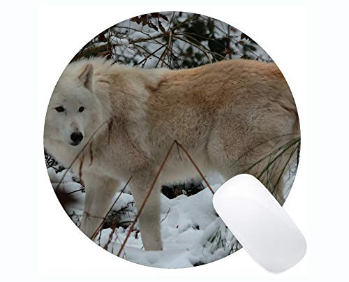 Round Gaming Mouse pad,White Wolf Wildlife Wolf Mouse Pads for Computers Laptop 230mm x 230mm x 3mm) ()