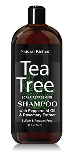 Tea Tree Oil Special Anti-Dandruff Shampoo - with 100% Pure Tea Tree Oil, for Itchy and Dry Scalp, Sulfate Free, Paraben Free - for Men and Women. 16 fl oz.