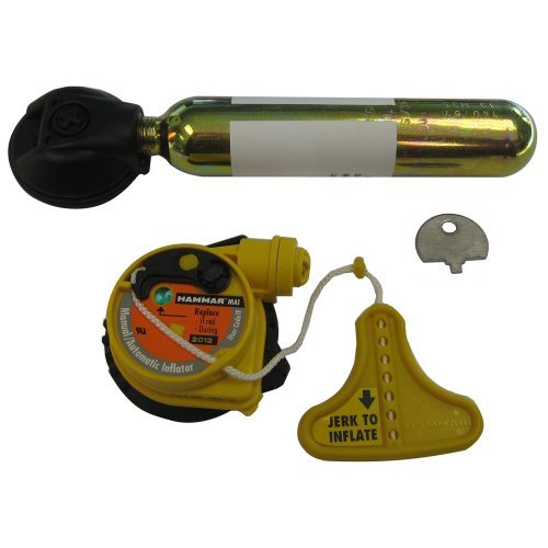 Mustang Hydrostatic Inflator Rearming Kit by Rearming Hydrostatic by Mustang Survival B0153Y4ALW, 神戸芳香園 お茶といろいろ:317a06ee --- m2cweb.com