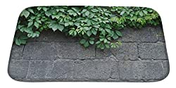 Gear New Bath Rug Mat No Slip Skid Microfiber Soft Plush Absorbent Memory Foam, Green Leaves Of Ivy Virginia Creeper On Bare Boards Of A Wooden Fence, 34x21