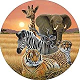 zebra tire cover - Safari Elephant Giraffe Zebra Cheetah Tiger Spare Tire Cover for Jeep RV Camper VW Trailer etc(Select popular sizes from drop down menu or contact us-ALL SIZES AVAILABLE)
