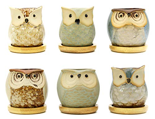 Goldblue 2.5 Inch Owl Pot Ceramic Flowing Glaze Succulent Plant Pot with Bamboo Drip Tray Cactus Plant Pot Flower Pot Container Planter