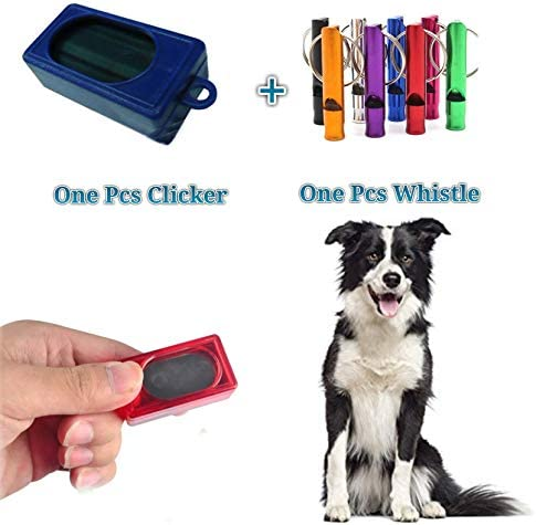 Buy Petlicious & More Made in Taiwan Dog Professional