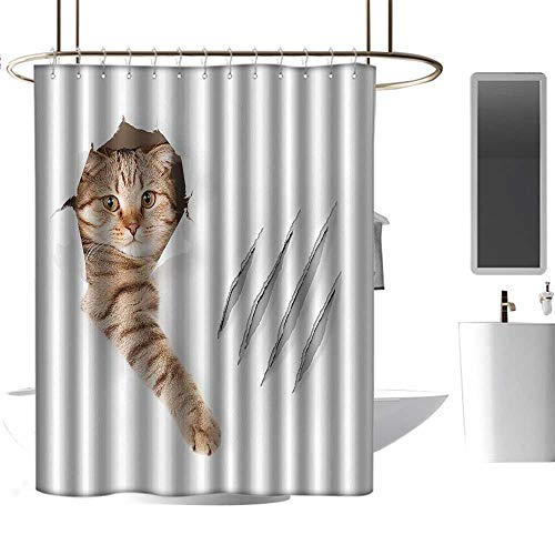 Shower Curtains sea Theme Animal,Funny Cat in Wallpaper Hole with Claw Scratches Playful Kitten Cute Pet Picture,Brown White,W36 x L72,Shower Curtain for Shower stall