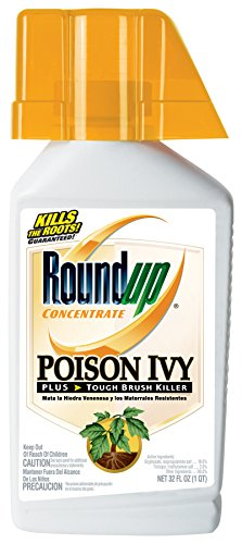 Poison Ivy Oak And Sumac - Roundup Poison Ivy Plus Tough Brush Killer Concentrate, 32-Ounce