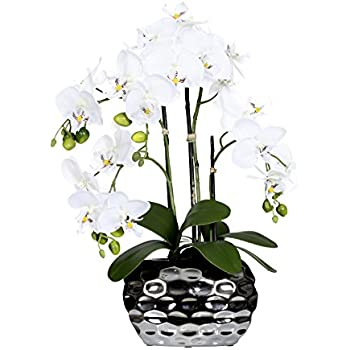 "Amazon.com: Deutschmade Artificial Flower, Fake White Orchid Phalaenopsis Including Textured Metallic-Silver Vase, 24"": Home & Kitchen"