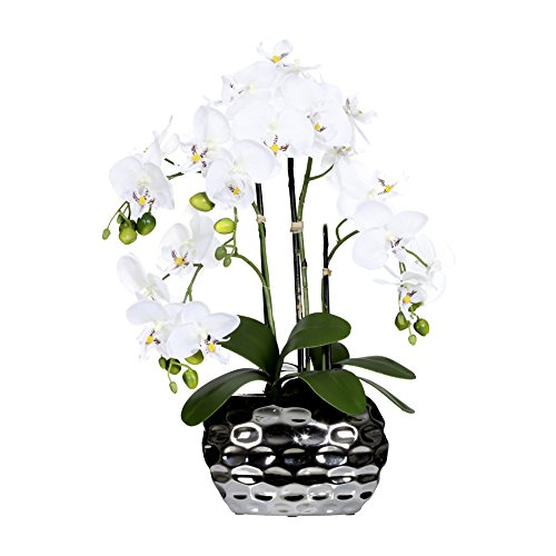 "Deutschmade Artificial Flower, Fake White Orchid Phalaenopsis Including Textured Metallic-Silver Vase, 24"""