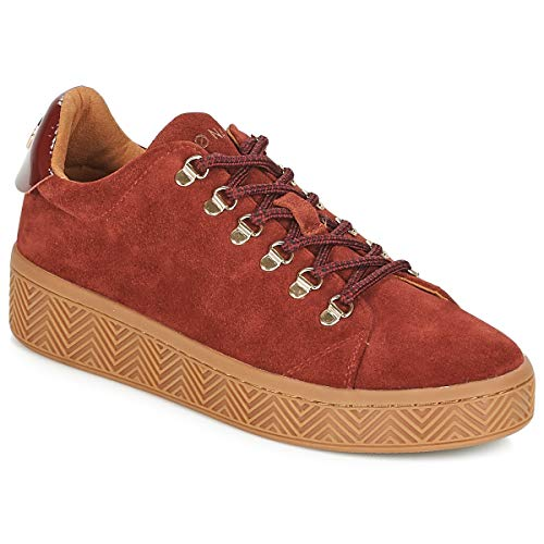 Ginger name Ginger Taupe Sneaker no Femme 1RqUwSS