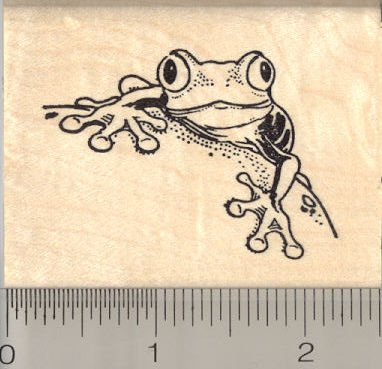 The 8 best amphibians stamps