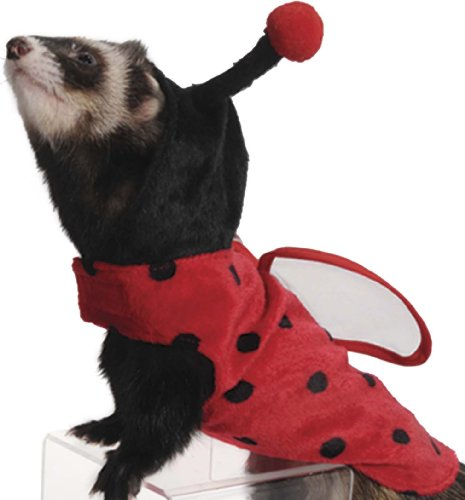 Picture of Marshall Pet Products Ladybug Costume for Ferrets