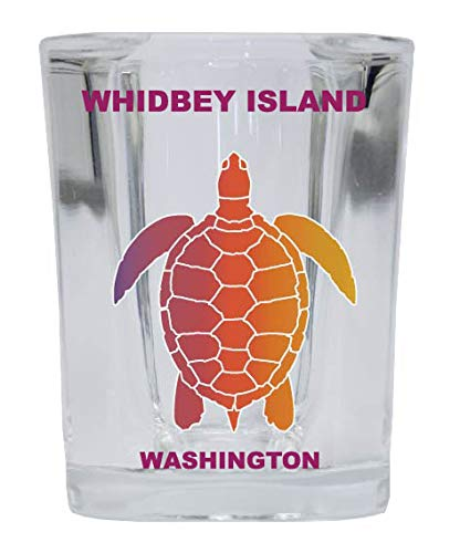 WHIDBEY ISLAND Washington Square Shot Glass Rainbow Turtle Design