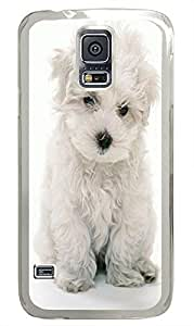 Samsung S5 cheap case White Yorkie Animal PC Transparent Custom Samsung Galaxy S5 Case Cover