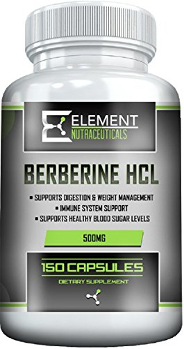 Cheap BERBERINE (150ct x 500mg) by Element Nutraceuticals – Immune System, Healthy Blood Sugar Levels and Digestion Support