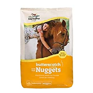 Manna Pro 4 lb Bag of Flavored Bite Size Nuggets. Great for Training! (Butterscotch)