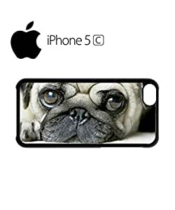 Pug Life Cute Doggie Grumpy Mobile Cell Phone Case Cover iPhone 5c White
