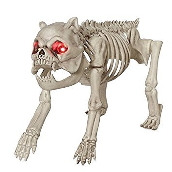 Seasons Halloween Skeleton Dog with LED Eyes (1,