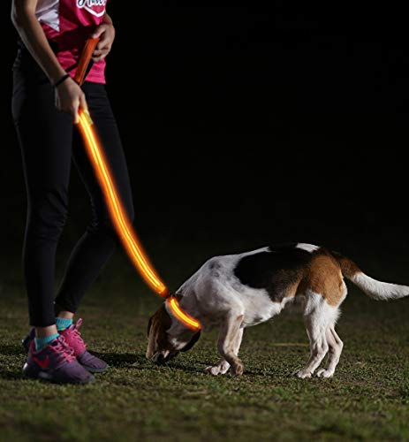 Image of LED Dog Collar, USB Rechargeable, X-Small (9 - 13.7