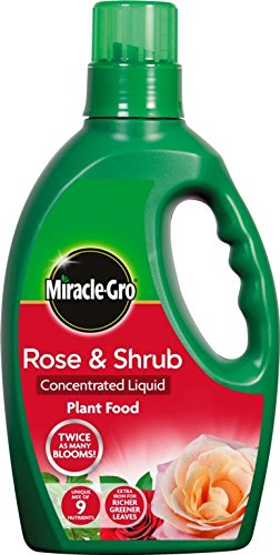 Rose & Shrub Plant Food (1L Bottle)