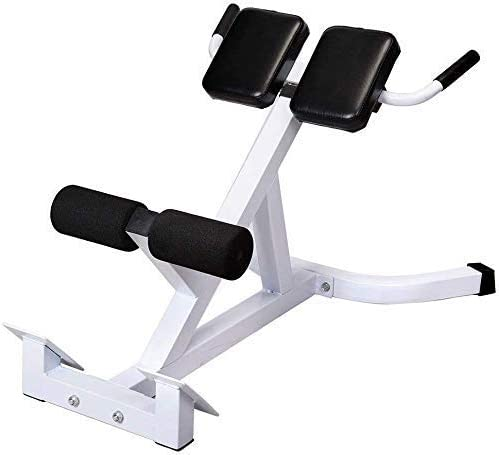 NEW 45 AB//Hyper Back Bench Adjustable Extension Back Exercise Roman Chair US
