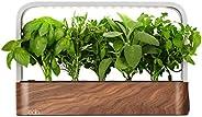 edn SmallGarden with Basil SeedPods, Indoor Grow Smart Garden Starter Kit for Fresh Home Grown Herbs, Plants a