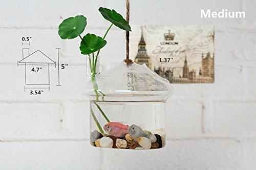 Review NewDreamWorld's Unique Mushroom House