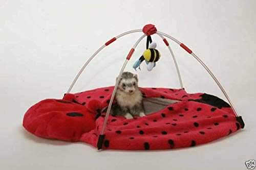 FidgetKute Marshall Ferret Cage Lady Bug Play Center Bed Toy Show One Size by FidgetKute