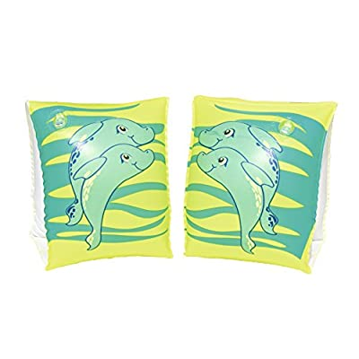 H2OGO! Inflatable Swim Dolphin Arm Bands: Toys & Games