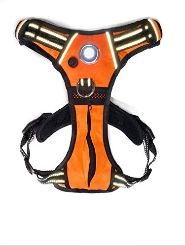 headlight harness LED Harness - Medium Orange