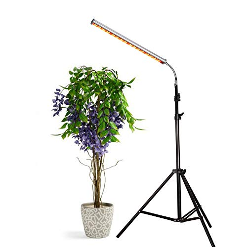 30W Floor Stand Grow Light, LED Floor Lamp with Flexible Gooseneck, Warmwhite and Red Light Spectrum for Indoor Plants, Seedling, Hydroponic, Basement Plants to Survive Winter