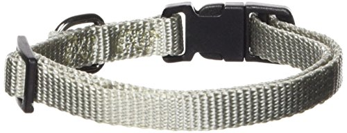 - Hamilton Gun Metal Series Adjustable Dog Collar, 3/8-Inch, Jade