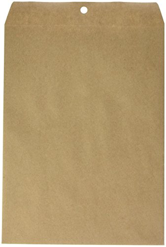 Earthwise by Ampad 19705 100% Recycled Paper Clasp Envelope, 9 x 12, Brown (Box of 110)
