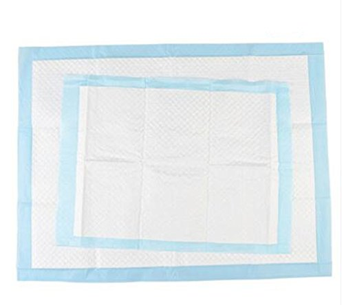 Dog diapers kitty diaper cat pad water absorption deodorant dog urine mat  teddy diaper pet diaper dog supplies (L (50 pcs /package))