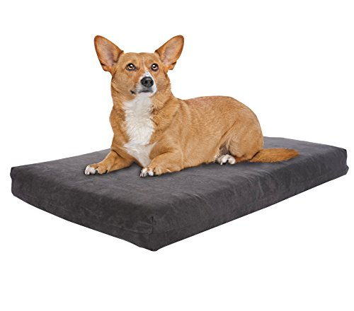 Pet Support Systems Orthopedic Gel Memory Foam Dog Bed, Small (22'' L x 16'' W), Grey Charcoal