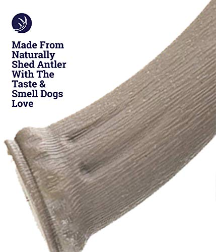 Petstages Made in USA Deer Antler Large Dog Chew Toy