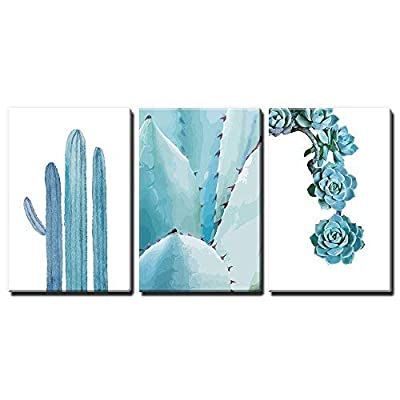 Blue Cactus And Succulents - 3 Panel Canvas Art