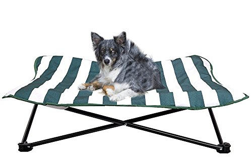 Portable Dog Cot Elevated Pet Bed For Dogs Cat Travel Camping 35u2033X35u2033  PUPTECK