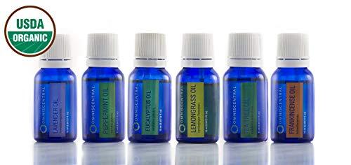 Omniscentral Aromatherapy USDA Organic Essential Oils | Top 6 Singles Gift Set | 100% Pure Natural Therapeutic Grade | Frankincense, Peppermint, Lavender, Eucalyptus, Lemongrass, Tea Tree | 15 ml