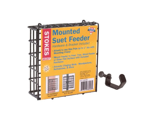 Stokes Select Mounted Suet Bird Feeder, Hardware and Bracket Included, One Suet Capacity