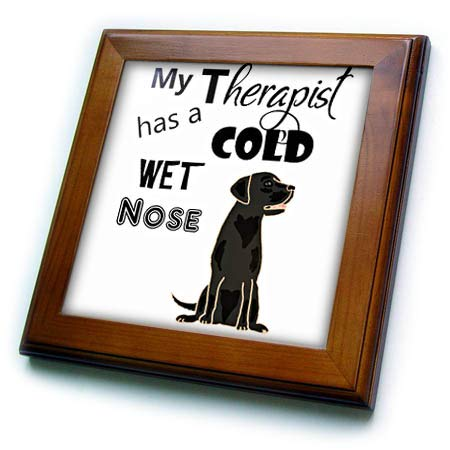(3dRose All Smiles Art Pets - Funny My Therapist has a Cold Wet Nose Labrador Retriever - 8x8 Framed Tile (ft_287952_1))