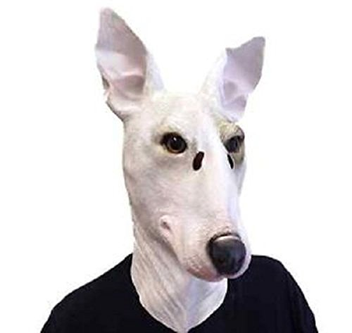 [Mememall Fashion New Horse Head Mask Creepy Halloween Costume Theater Prop Latex Rubber Novelty] (Han Solo Costume Girl)