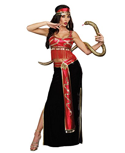 Snake Charmer Woman Costume (Dreamgirl 9881 The Snake Charmer Egyptian Sexy Womens Costume - Large - Red/Black/Gold)
