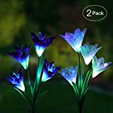 Gkwet Outdoor Solar Garden Stake Lights - 2 Pack Solar Powered Lights with 8 Lily Flower, White LED Solar Stake Lights for Garden, Patio, Backyard (Purple and White)