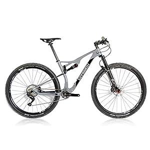 Stradalli 29er Gray/Black Carbon Dual Suspension Cross Country XC Mountain Bike Shimano XT DT-Swiss Wheel Set