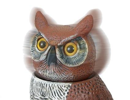 Amazon.com : Gardeneer By Dalen Natural Enemy Scarecrow Rotating Head Owl :  Bird Repellents : Patio, Lawn U0026 Garden